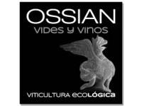 Bodega Ossian Vides y Vino